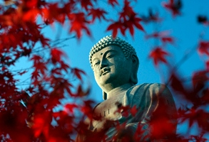 Buddha with leaves, autumn